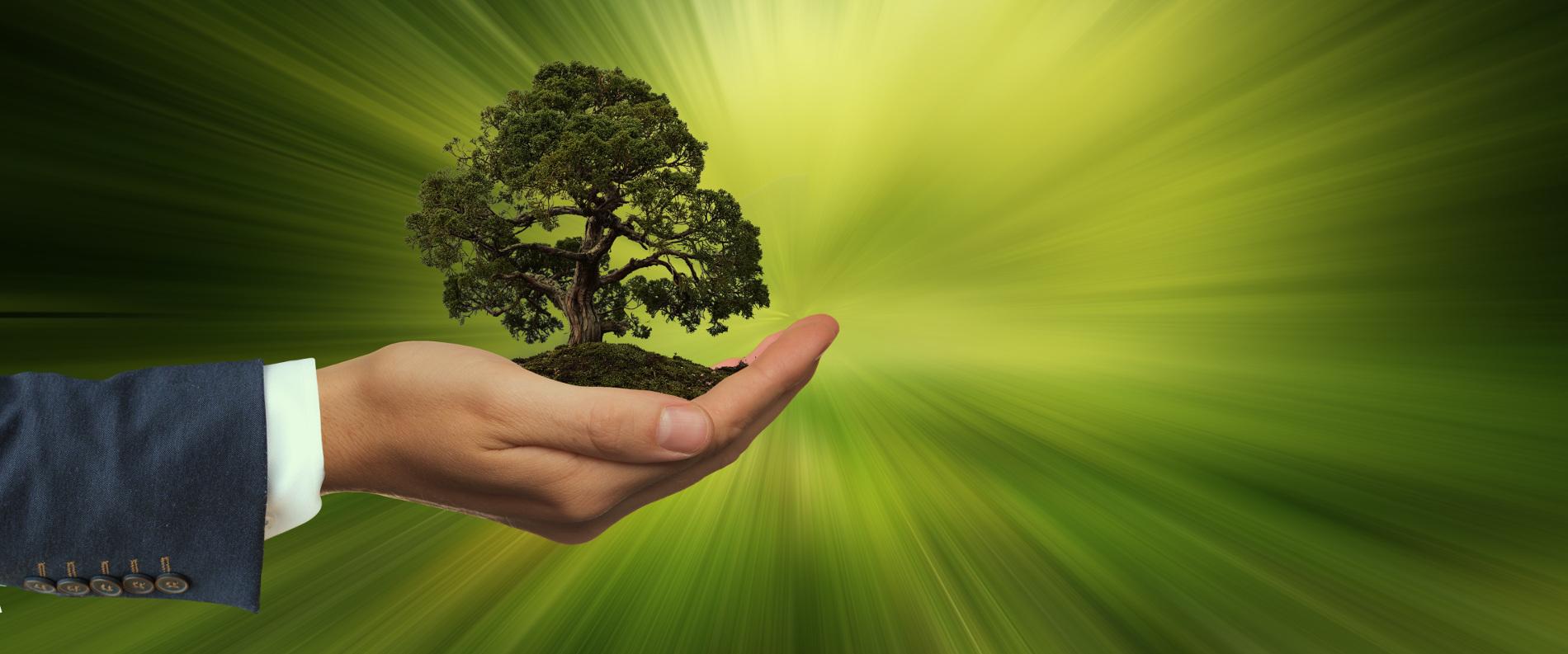 """EU erlässt neue Verordnungen, um das so genannte """"Greenwashing"""" von Finanzprodukten zu verhindern."""