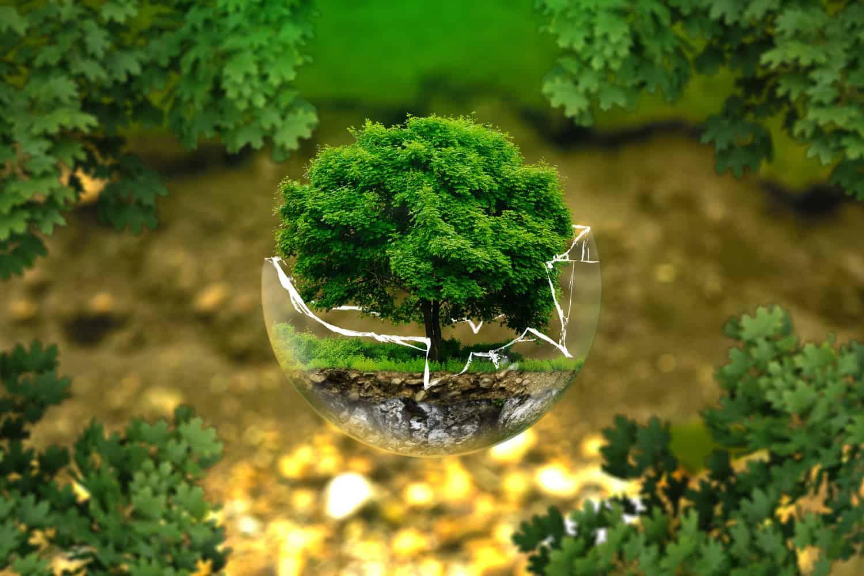 Wie mit Nachhaltigkeitsrisiken umgehen? Ein Merkblatt der BaFin soll Antworten geben.