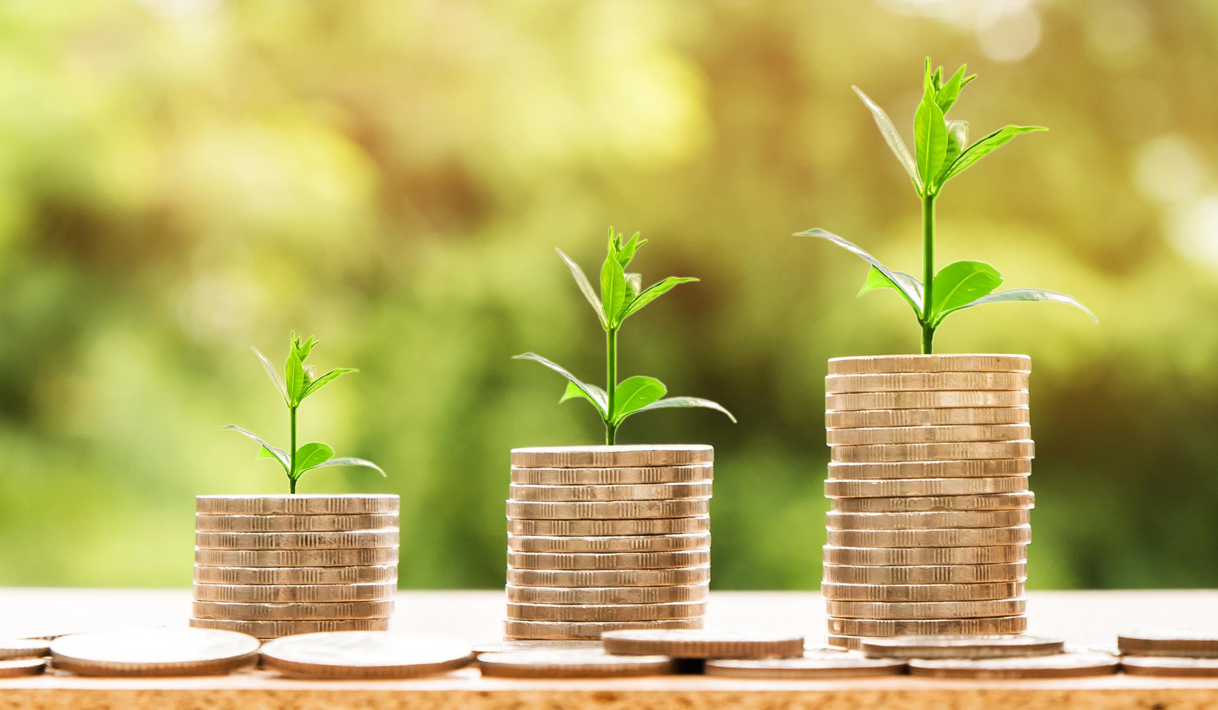 Nachhaltige Kriterien werden für die Kapitalanlage zunehmend wichtiger. Der Gesetzgeber legt den Marktakteuren daher neue Pflichten auf.